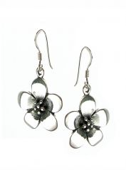 Sterling Silver Daisy Drop Earrings (!)